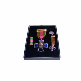 Medalla XXV años edición lujo -pasador- minis