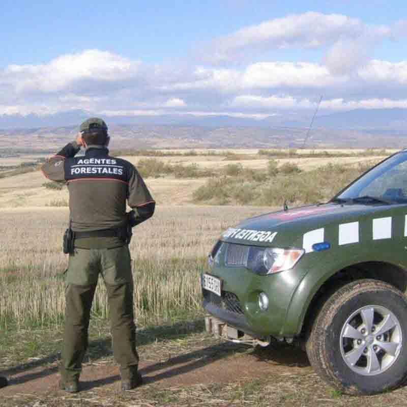 ¿Conoces el equipamiento de los agentes forestales?